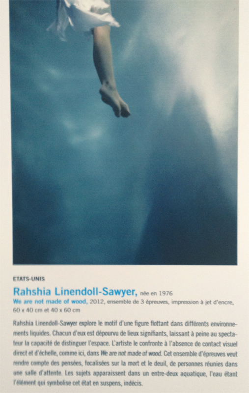 Contemporary Talent 2012 winner, We are not made of Wood, Rahshia Linendoll-Sawyer